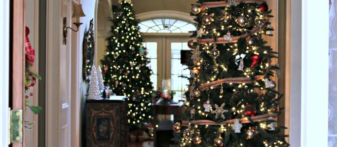 Christmas Trees and Memories